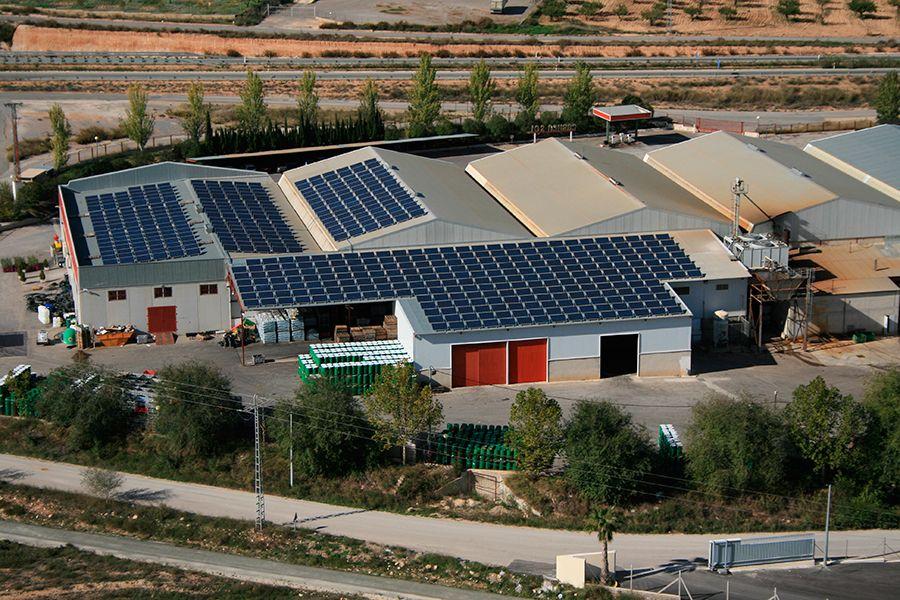 Energía solar fotovoltaica para empresas